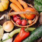 抗酸化作用を知ろう!活性酸素を理解し老化を防ぐ食事とスキンケアを